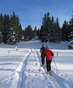 Fitness activities: xc skiing